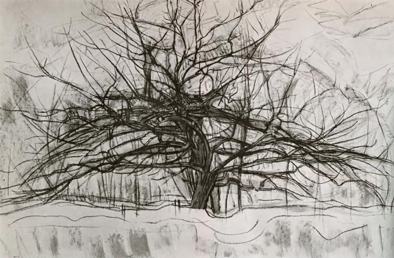 5 деревьев Пита Мондриана | Tree II, 1912 by Piet Mondrian