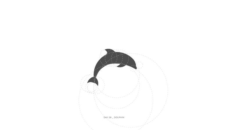 Золотое сечение_дельфин